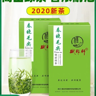 春晓毛尖绿茶2020新茶叶散装特级四川蒙顶毛峰明前炒青250g