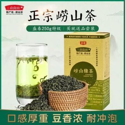 崂山绿茶2019新茶春茶青岛日照特级山东散装云雾毛尖茶叶袋装250g