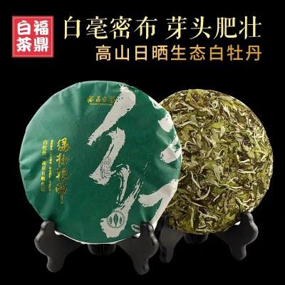 珍稀特级白牡丹陈年福鼎黄金芽茶白茶高品质老白茶10年牡丹王茶叶350克