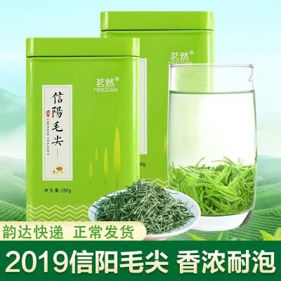 2019新茶 信阳毛尖 正宗信阳绿茶茶叶雨前春茶浓香耐泡500g