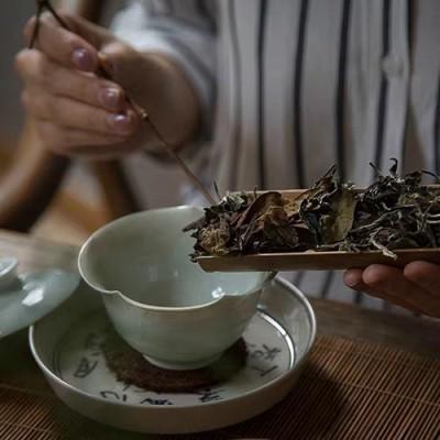 云南白茶 大叶种古树白茶  头春纯料散茶叶 甜口散茶250克