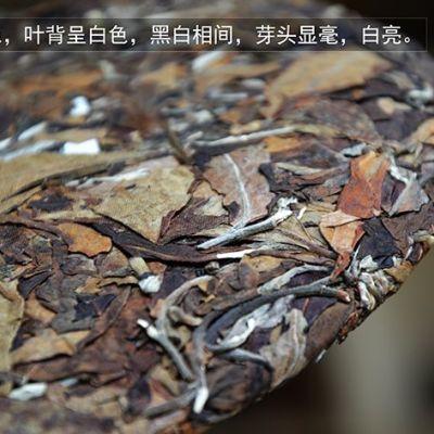 云南白茶 七子饼茶 南糯山古树茶原料 白茶制作工艺 357克南糯白茶