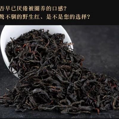 野生滇红2020年春茶云南特级野生红茶500克精品礼盒装