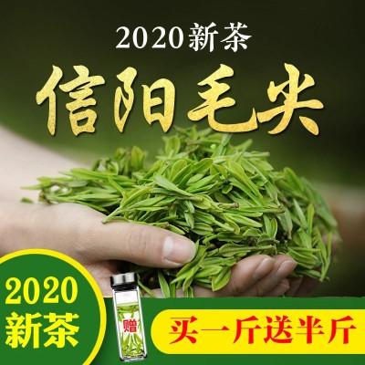 茶叶【买一斤送半斤】信阳毛尖2020新茶浓香型高山绿茶茶叶多规格