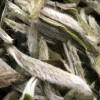 2020年新茶上市头采福鼎米芽白豪银针100克