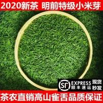 雀舌茶叶绿茶2020新茶特级散装栗香豆香竹叶炒青茶100g