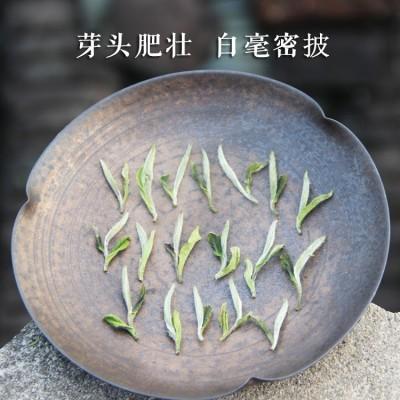 福鼎白茶牡丹王散茶2020年春茶牡丹王高山白茶