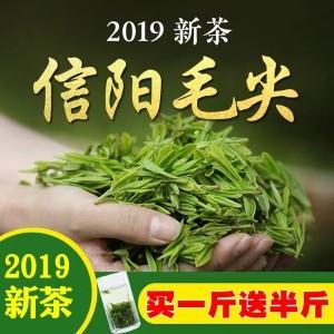 绿茶【买一斤送半斤信阳毛尖2019新茶散装浓香型高山茶毛尖茶叶750g
