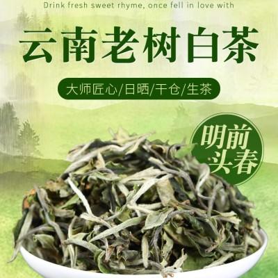 2020年云南白茶景谷大白毫月光美人古树500克普洱茶生茶散茶月光白