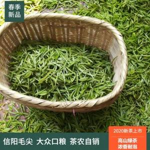 500克河南信阳毛尖2020新茶雨前毛尖茶叶特级嫩芽浓香型罐装绿茶