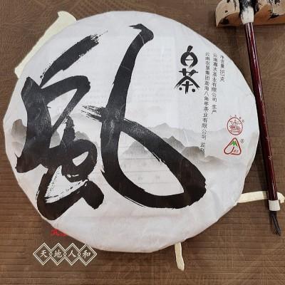 2019云南白茶月光白茶饼普洱茶生茶月光美人茶叶357g果香甜茶