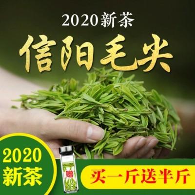 茶叶【买一斤送半斤】信阳毛尖2020新茶散装浓香型高山茶毛尖绿茶
