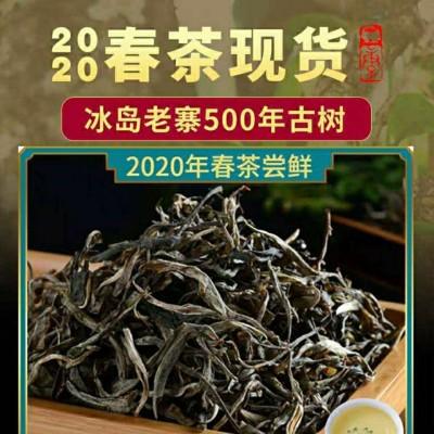 云南普洱生茶 2020年头春古树冰岛散茶。