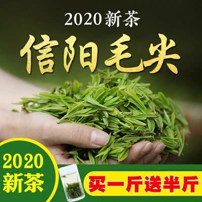 信阳毛尖2020新茶散装浓香型高山茶毛尖绿茶750g