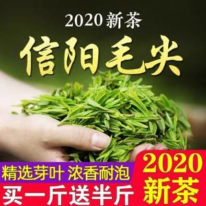 信阳毛尖2020新茶清明雨前高山云雾绿茶礼盒散装浓香型毛尖茶叶750g