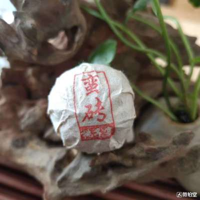 普洱生茶蛮砖国有林桃子寨高杆古树头春黄金叶龙珠200克普洱沱茶