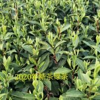 农家茶500g