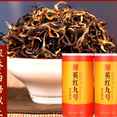 广东特产 英德红茶 英红九号 9号  霸道兰香老树茶 一斤两罐装