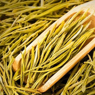 2020年原产地 新白茶 高山毛峰安吉绿茶 散装批发 高级黄金芽茶叶