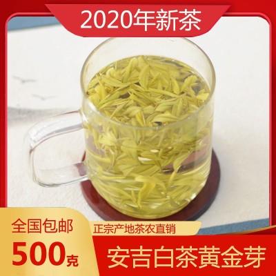 2021年新茶安吉白茶黄金芽明前特级500g包装黄金叶安吉白茶茶叶礼盒