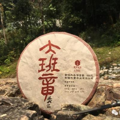 【大班章熟茶】朴素·私藏系列之2018